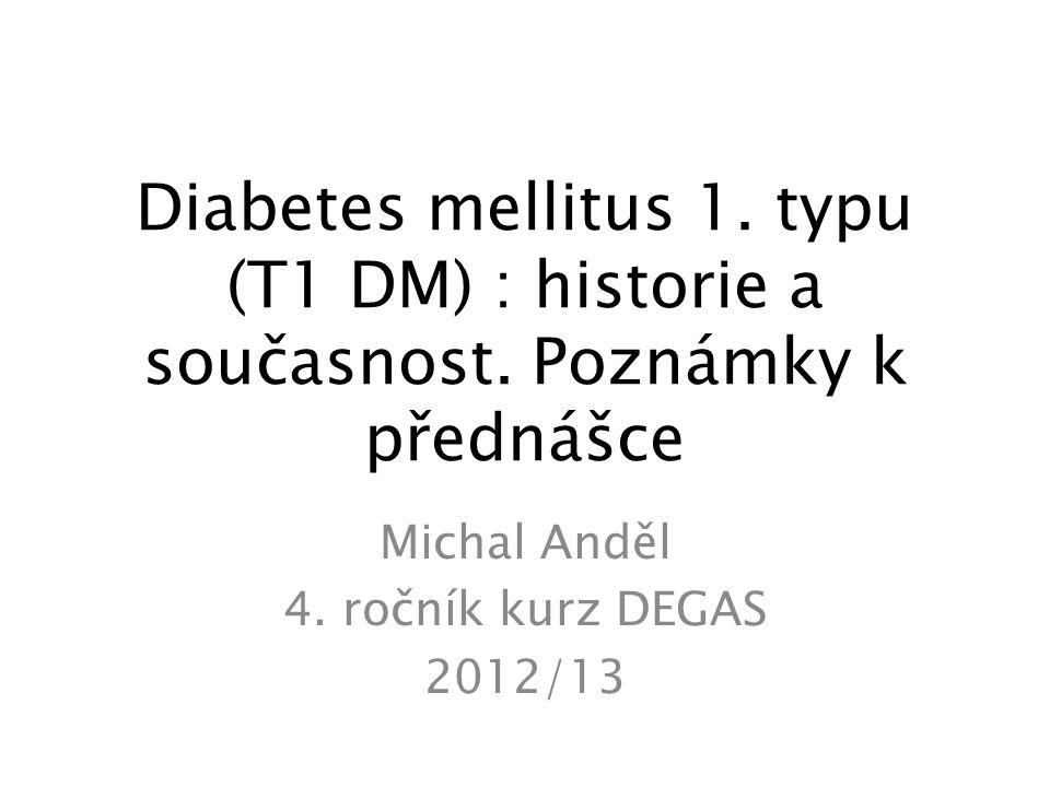 Michal Anděl 4. ročník kurz DEGAS 2012/13
