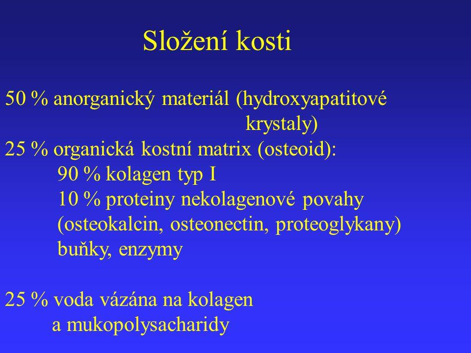 Složení kosti 50 % anorganický materiál (hydroxyapatitové krystaly)