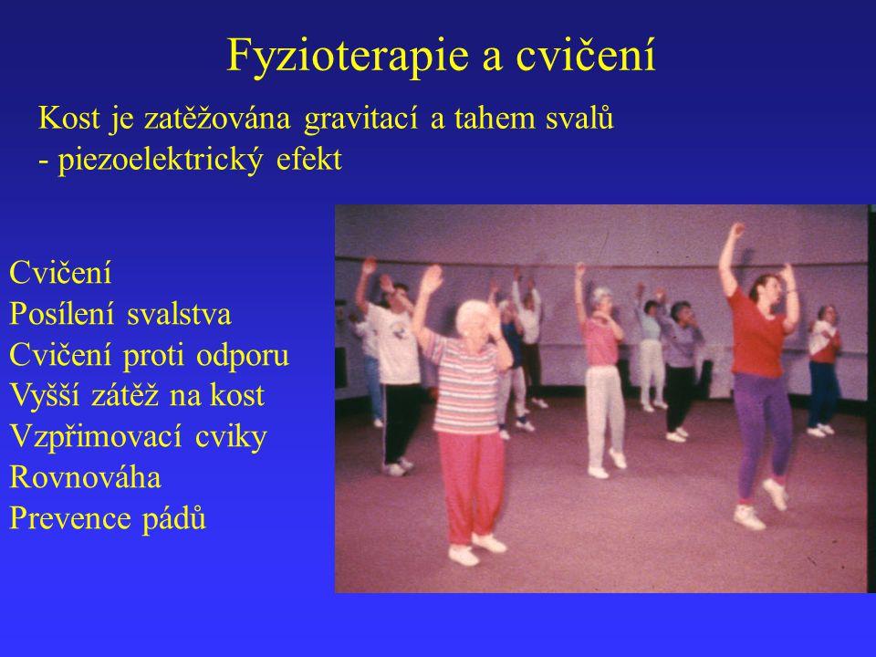 Fyzioterapie a cvičení
