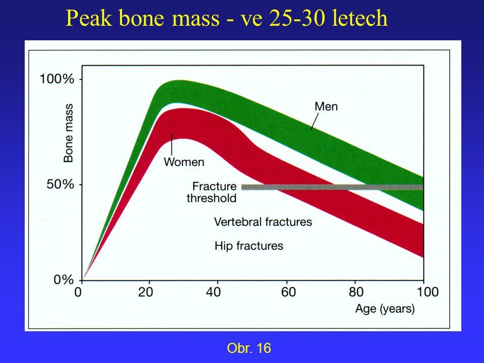 Peak bone mass - ve 25-30 letech