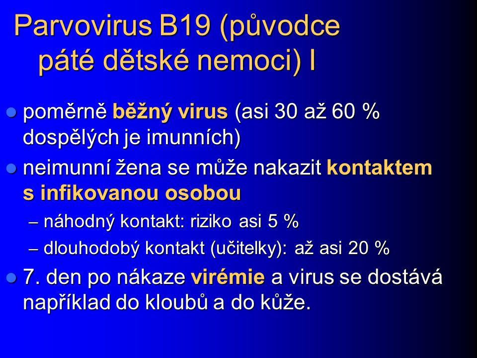Parvovirus B19 (původce páté dětské nemoci) I