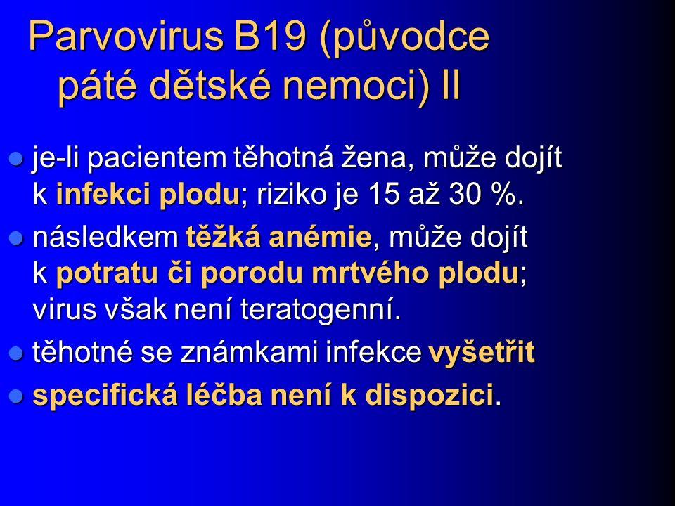 Parvovirus B19 (původce páté dětské nemoci) II