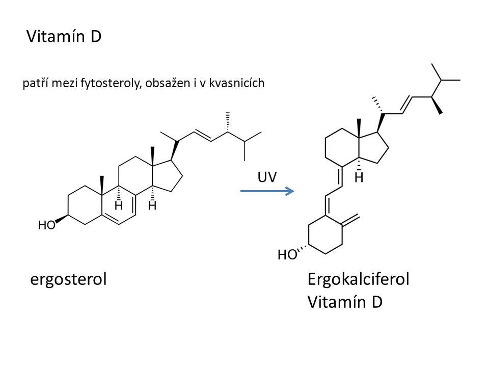 Vitamín D ergosterol Ergokalciferol Vitamín D UV