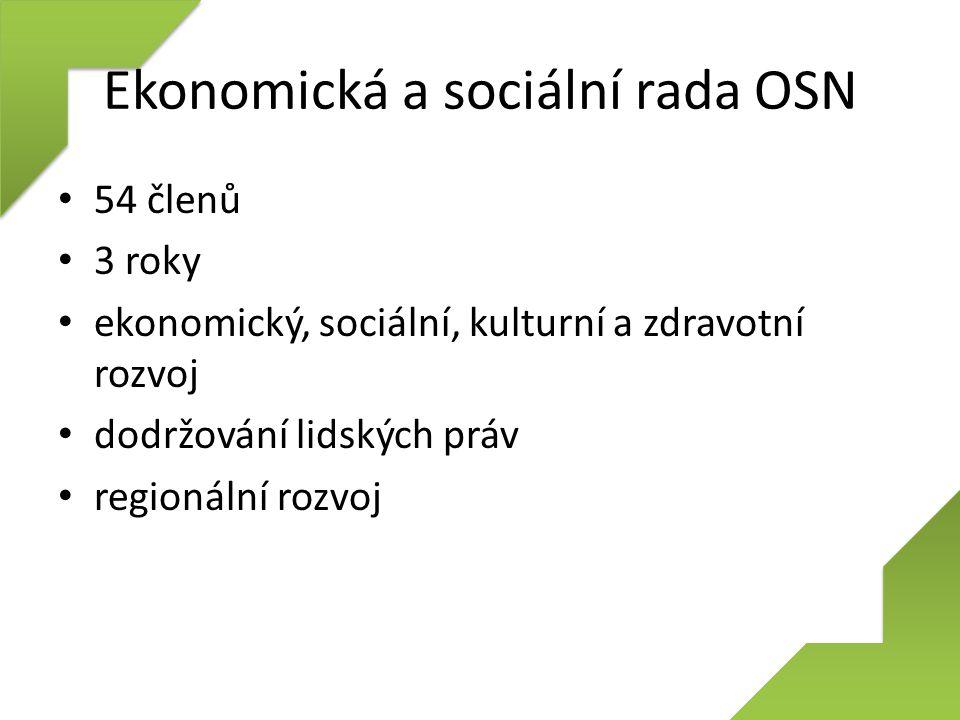 Ekonomická a sociální rada OSN