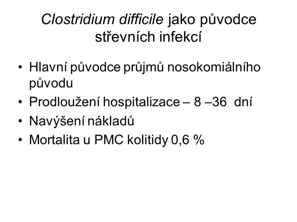 Clostridium difficile jako původce střevních infekcí