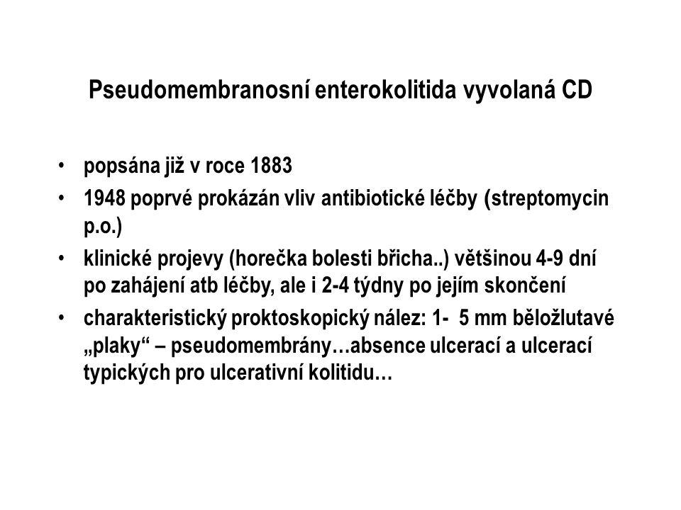 Pseudomembranosní enterokolitida vyvolaná CD