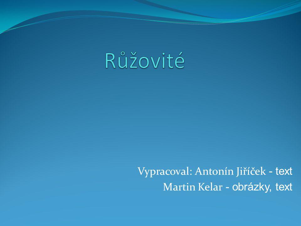 Vypracoval: Antonín Jiříček - text Martin Kelar - obrázky, text