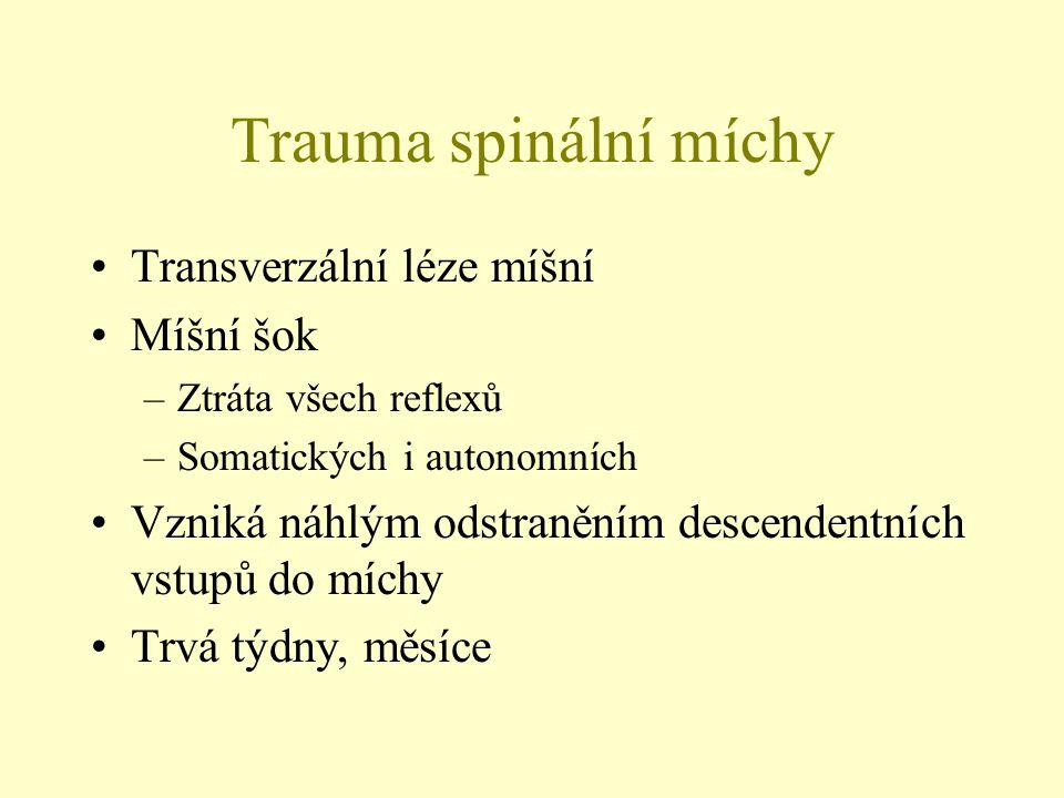 Trauma spinální míchy Transverzální léze míšní Míšní šok