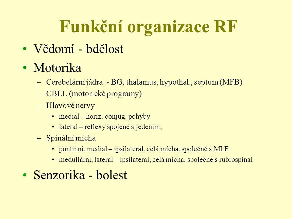 Funkční organizace RF Vědomí - bdělost Motorika Senzorika - bolest