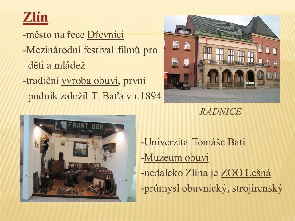 Zlín -město na řece Dřevnici -Mezinárodní festival filmů pro
