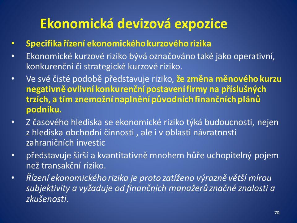 Ekonomická devizová expozice