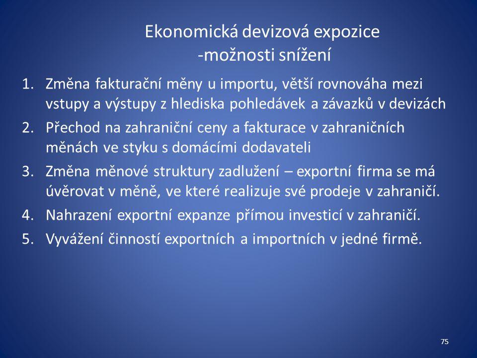 Ekonomická devizová expozice -možnosti snížení