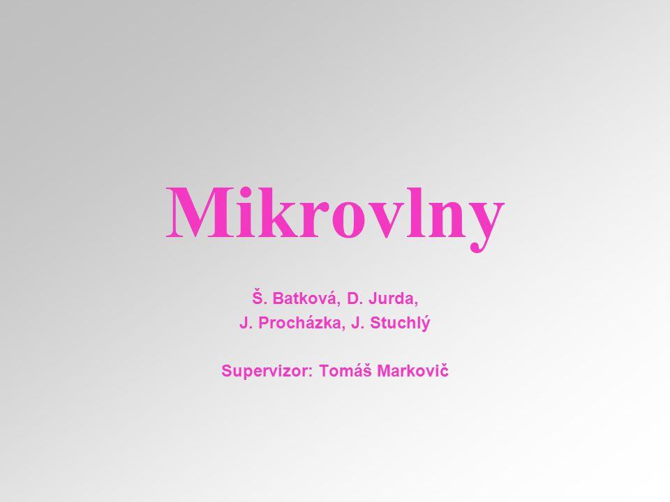 Supervizor: Tomáš Markovič