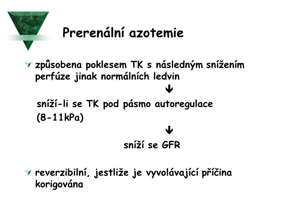 Prerenální azotemie způsobena poklesem TK s následným snížením perfúze jinak normálních ledvin.  sníží-li se TK pod pásmo autoregulace.