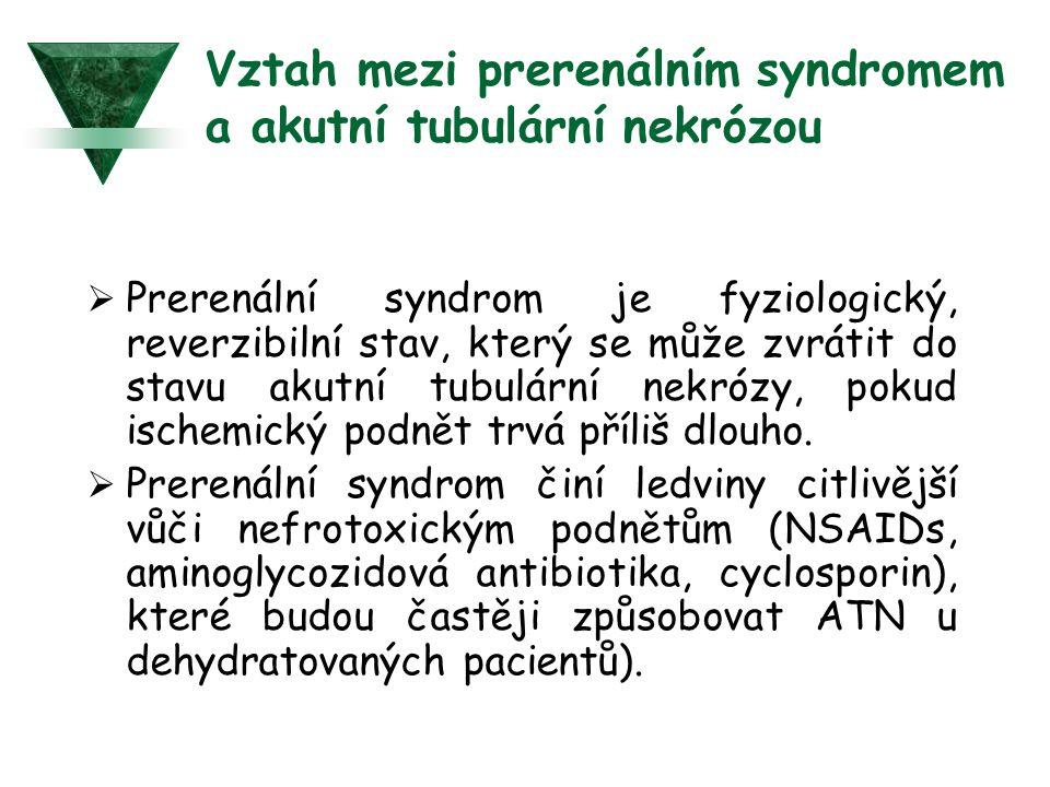 Vztah mezi prerenálním syndromem a akutní tubulární nekrózou