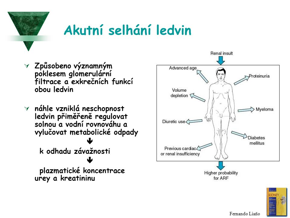 Akutní selhání ledvin Způsobeno významným poklesem glomerulární filtrace a exkrečních funkcí obou ledvin.