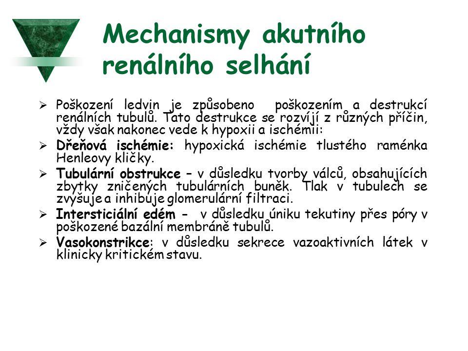 Mechanismy akutního renálního selhání