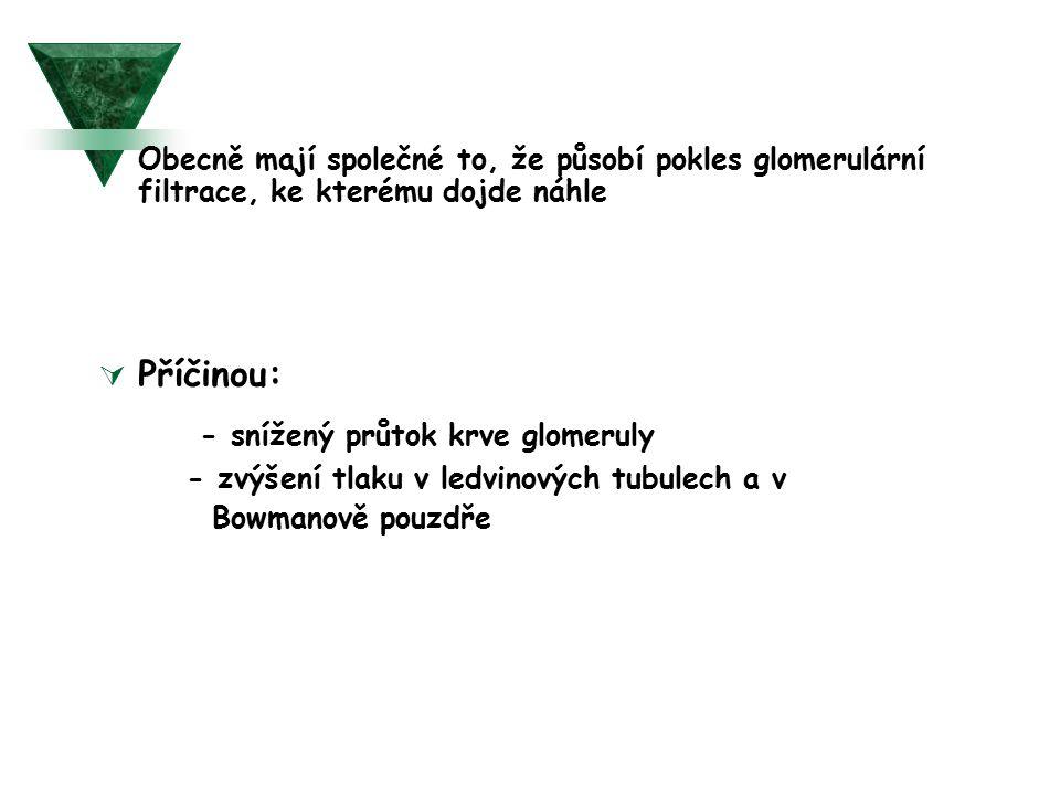 - snížený průtok krve glomeruly