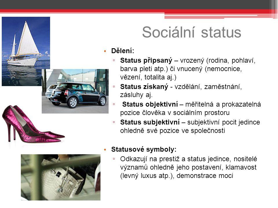 Sociální status Dělení: