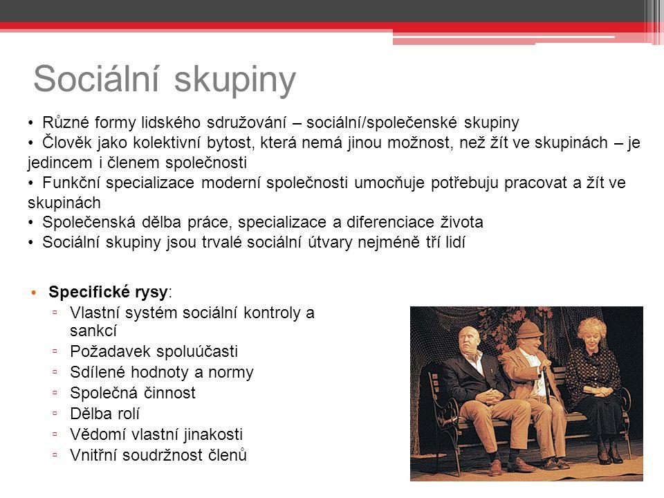 Sociální skupiny Různé formy lidského sdružování – sociální/společenské skupiny.