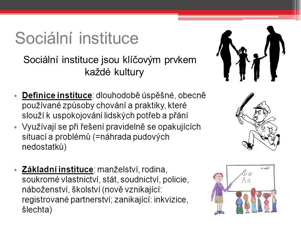 Sociální instituce jsou klíčovým prvkem každé kultury