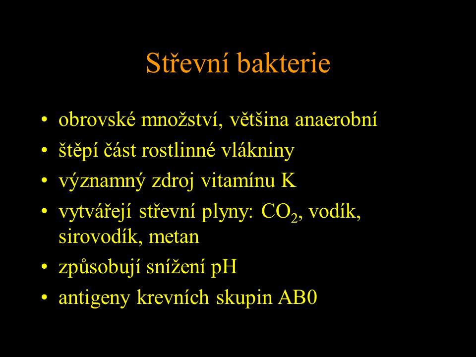Střevní bakterie obrovské množství, většina anaerobní