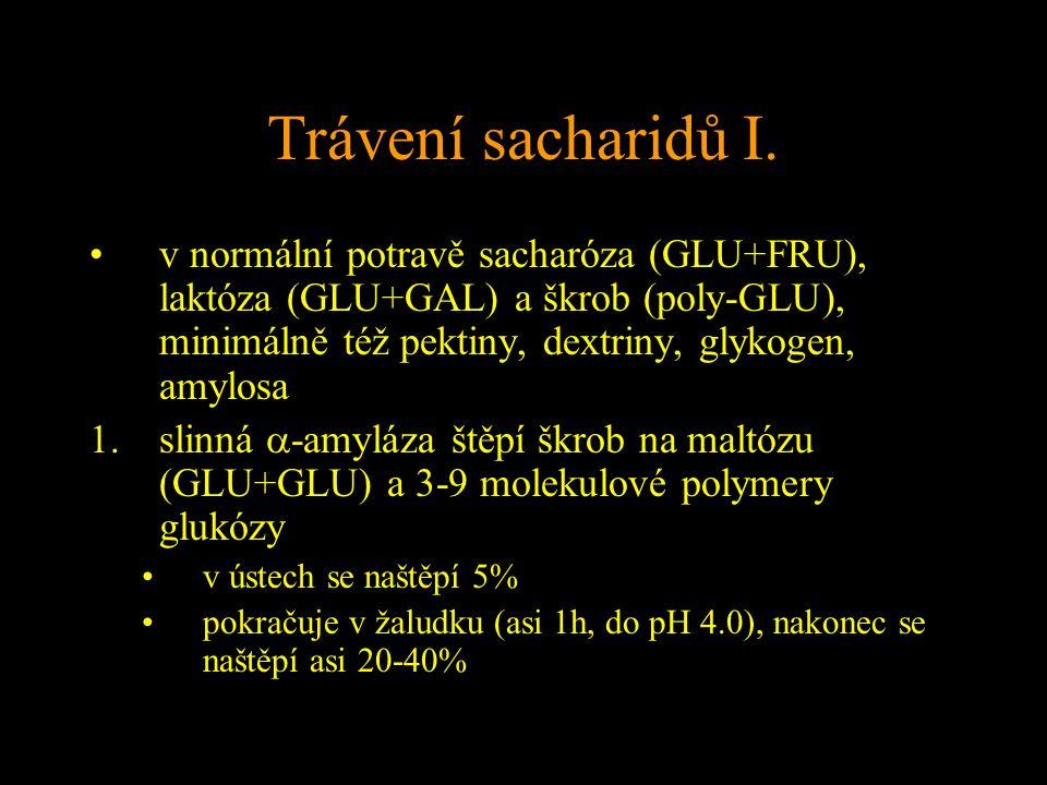 Trávení sacharidů I. v normální potravě sacharóza (GLU+FRU), laktóza (GLU+GAL) a škrob (poly-GLU), minimálně též pektiny, dextriny, glykogen, amylosa.