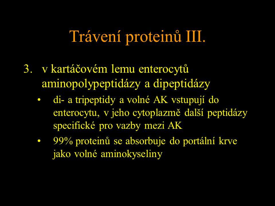 Trávení proteinů III. v kartáčovém lemu enterocytů aminopolypeptidázy a dipeptidázy.