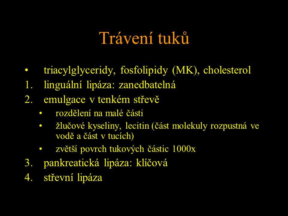 Trávení tuků triacylglyceridy, fosfolipidy (MK), cholesterol