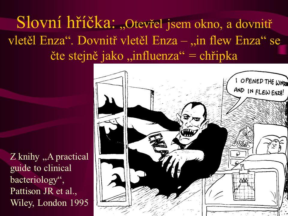 """Slovní hříčka: """"Otevřel jsem okno, a dovnitř vletěl Enza"""