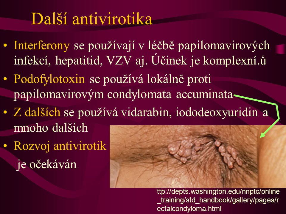 Další antivirotika Interferony se používají v léčbě papilomavirových infekcí, hepatitid, VZV aj. Účinek je komplexní.ů.