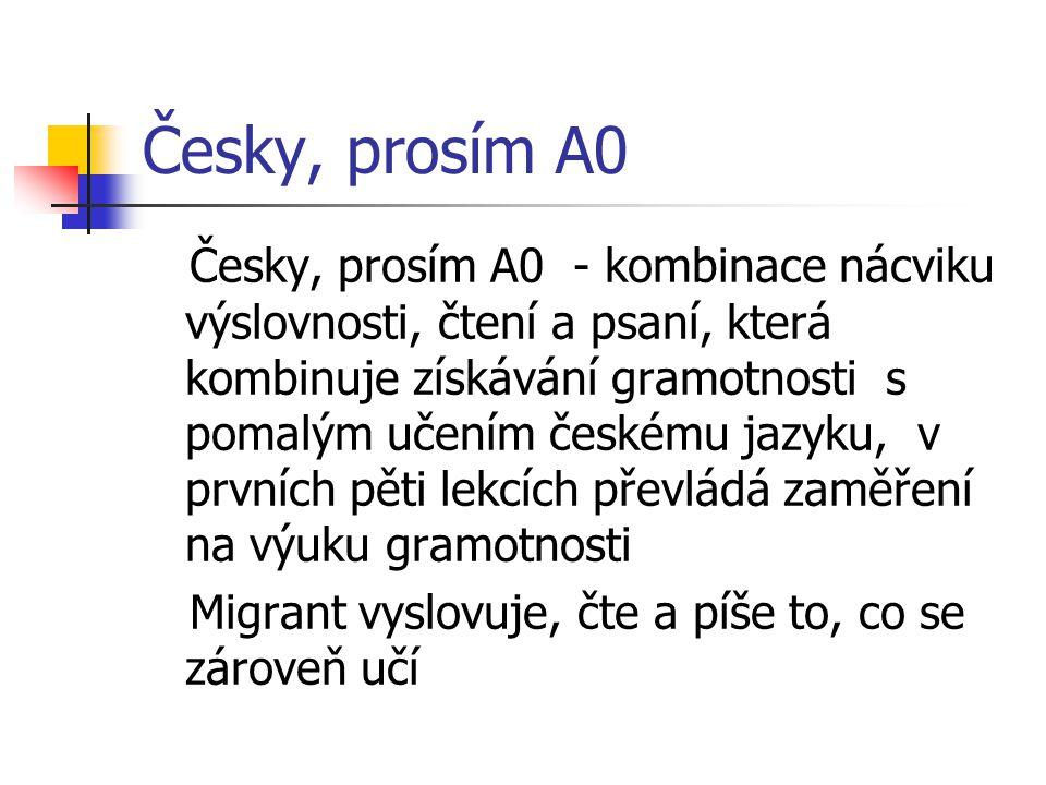 Česky, prosím A0