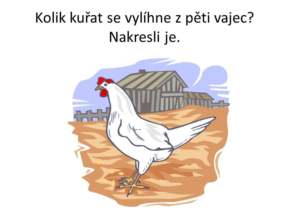 Kolik kuřat se vylíhne z pěti vajec Nakresli je.
