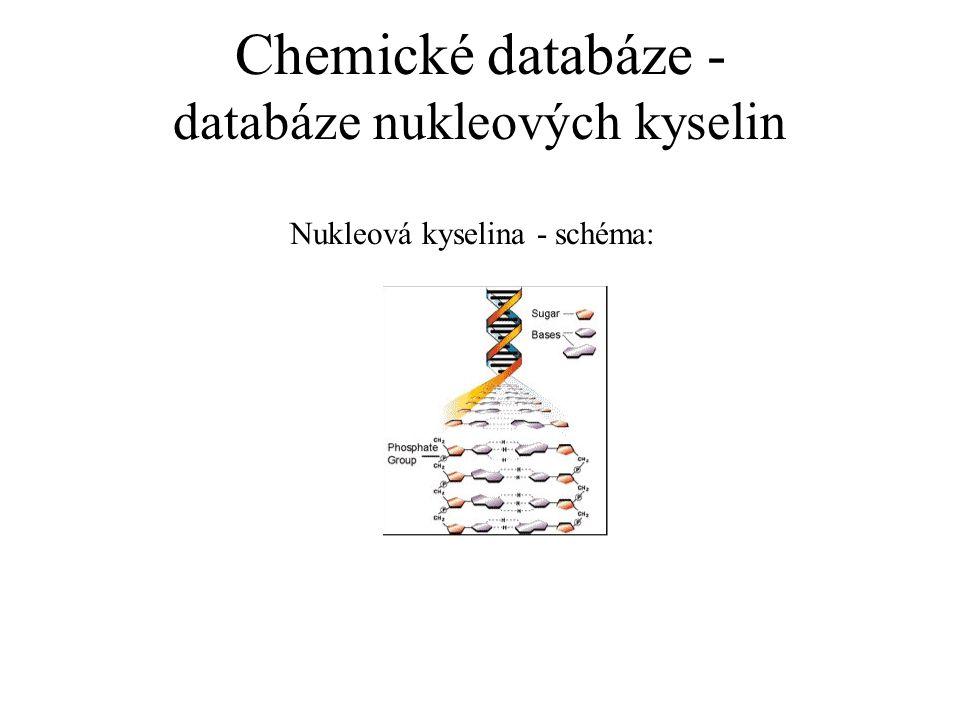 Chemické databáze - databáze nukleových kyselin