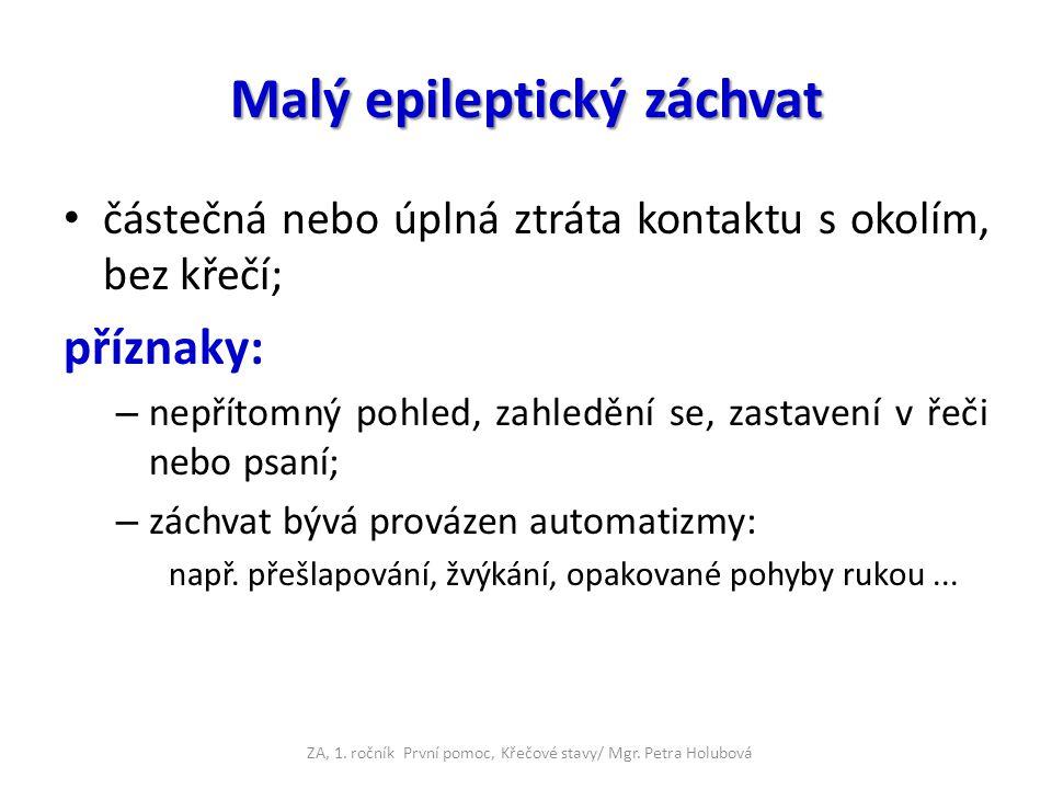 Malý epileptický záchvat