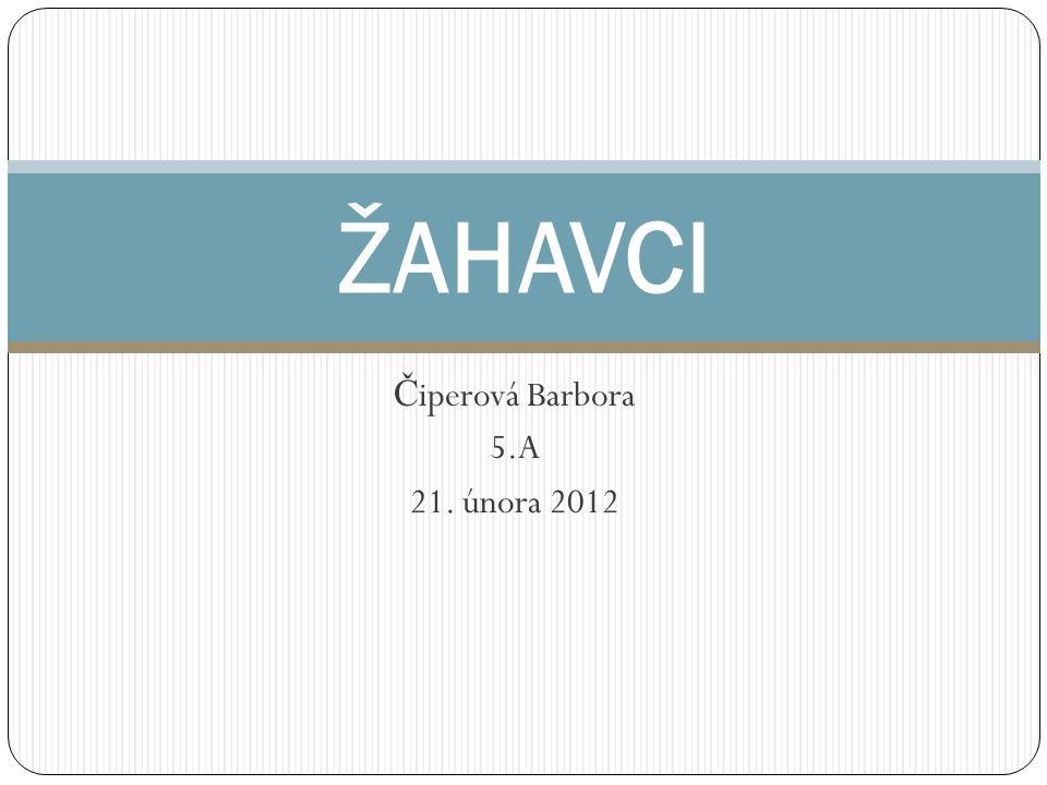 Čiperová Barbora 5.A 21. února 2012
