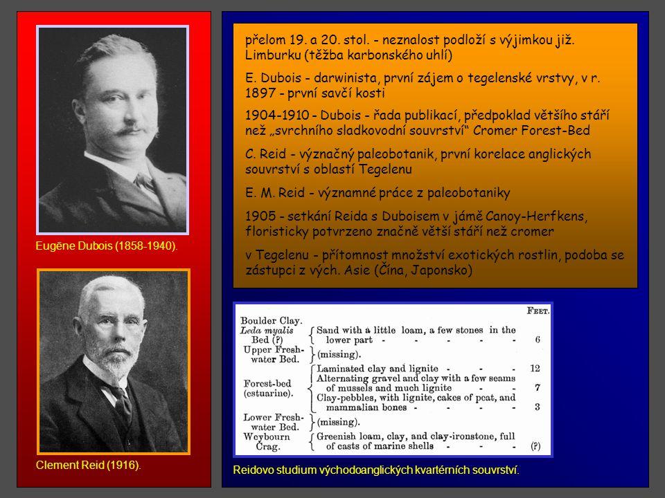 E. M. Reid - významné práce z paleobotaniky