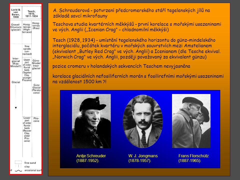 pozice cromeru v holandských sekvencích Teschem nevyjasněna
