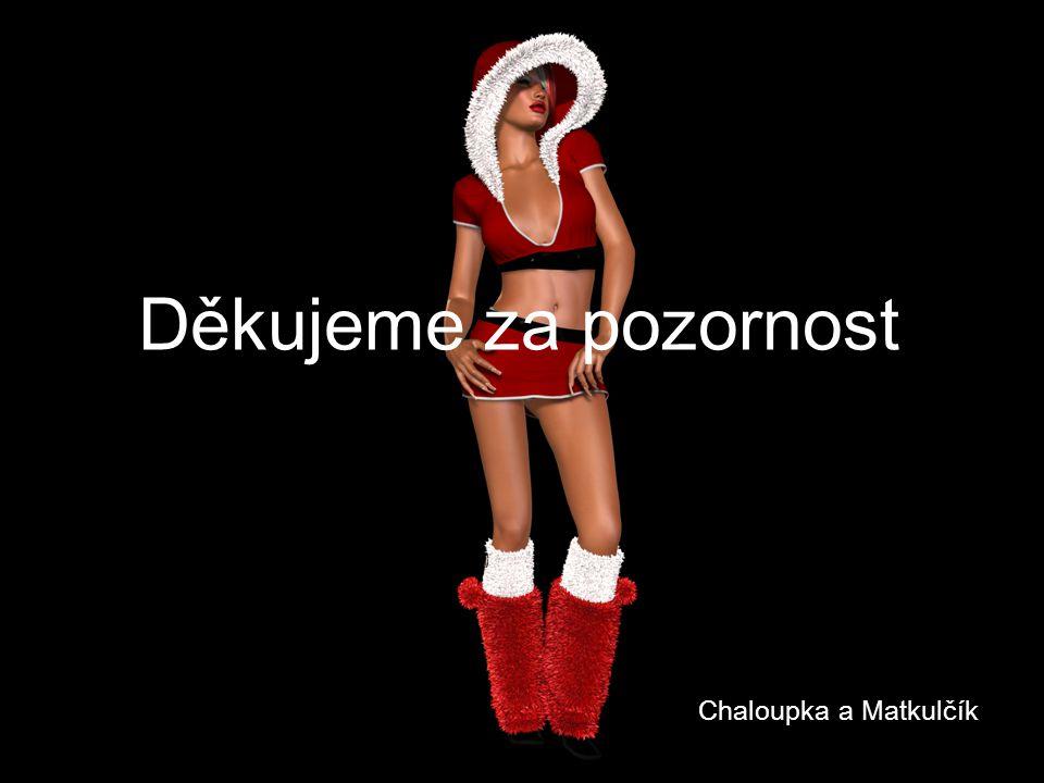 Děkujeme za pozornost Chaloupka a Matkulčík