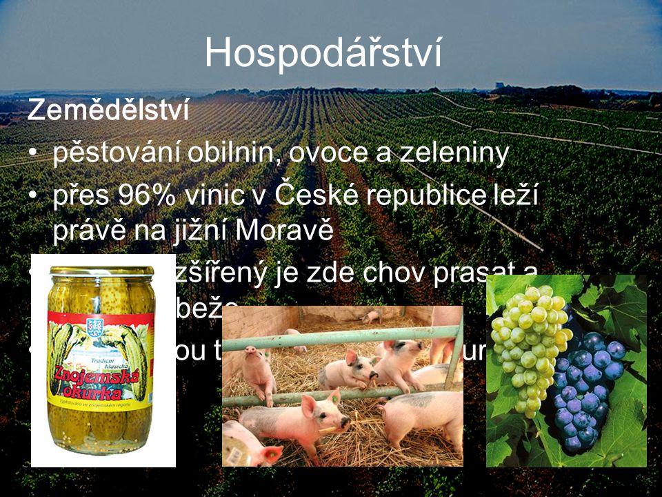 Hospodářství Zemědělství pěstování obilnin, ovoce a zeleniny