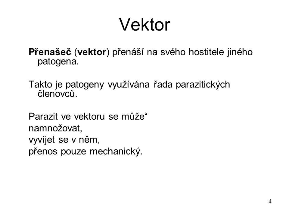 Vektor Přenašeč (vektor) přenáší na svého hostitele jiného patogena.