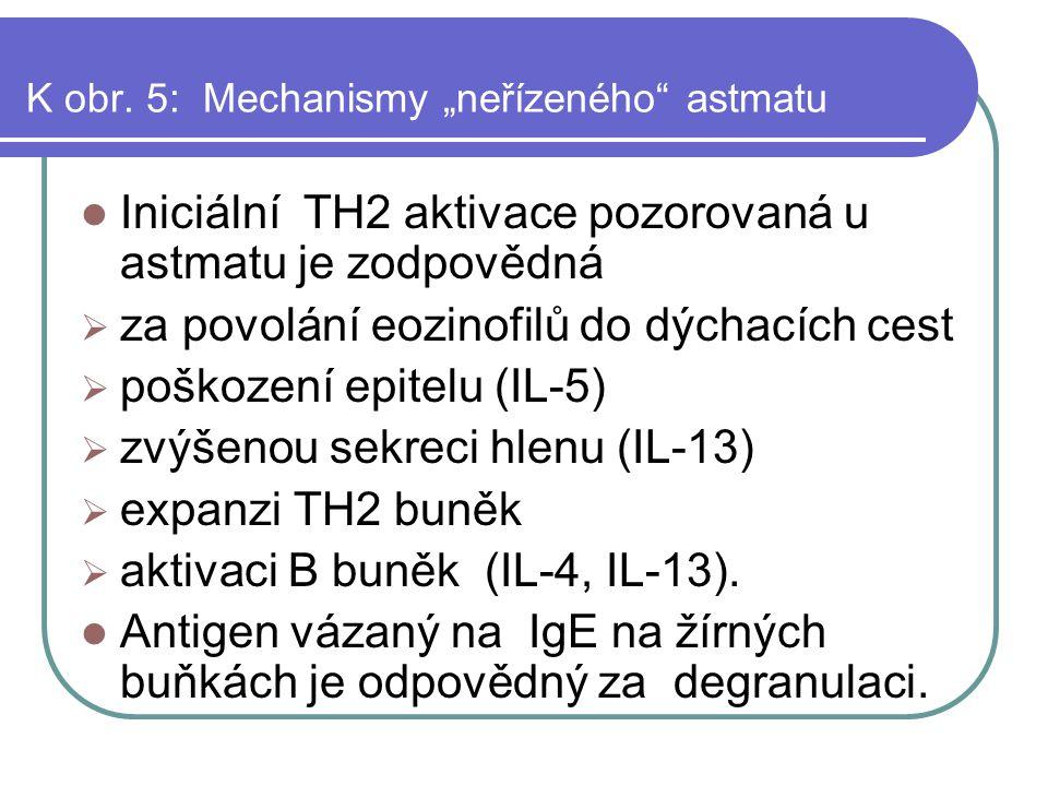 """K obr. 5: Mechanismy """"neřízeného astmatu"""