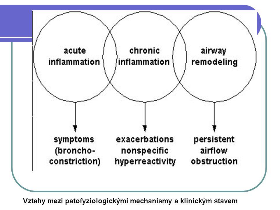 Vztahy mezi patofyziologickými mechanismy a klinickým stavem