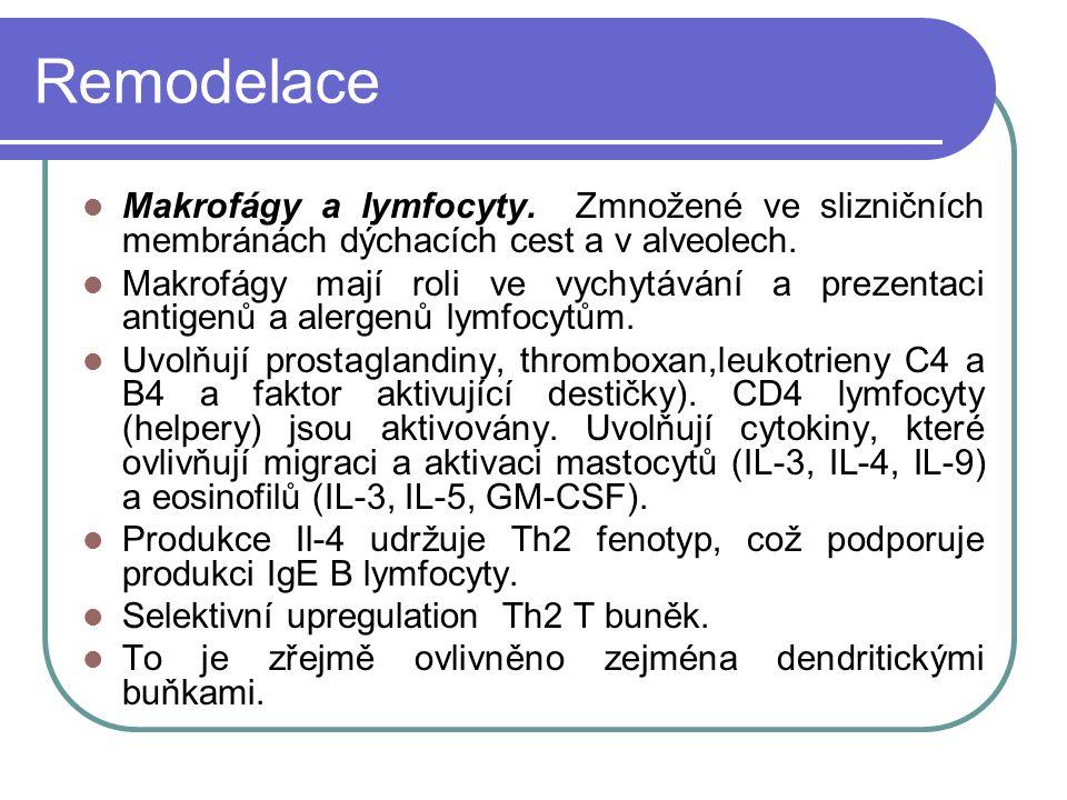 Remodelace Makrofágy a lymfocyty. Zmnožené ve slizničních membránách dýchacích cest a v alveolech.
