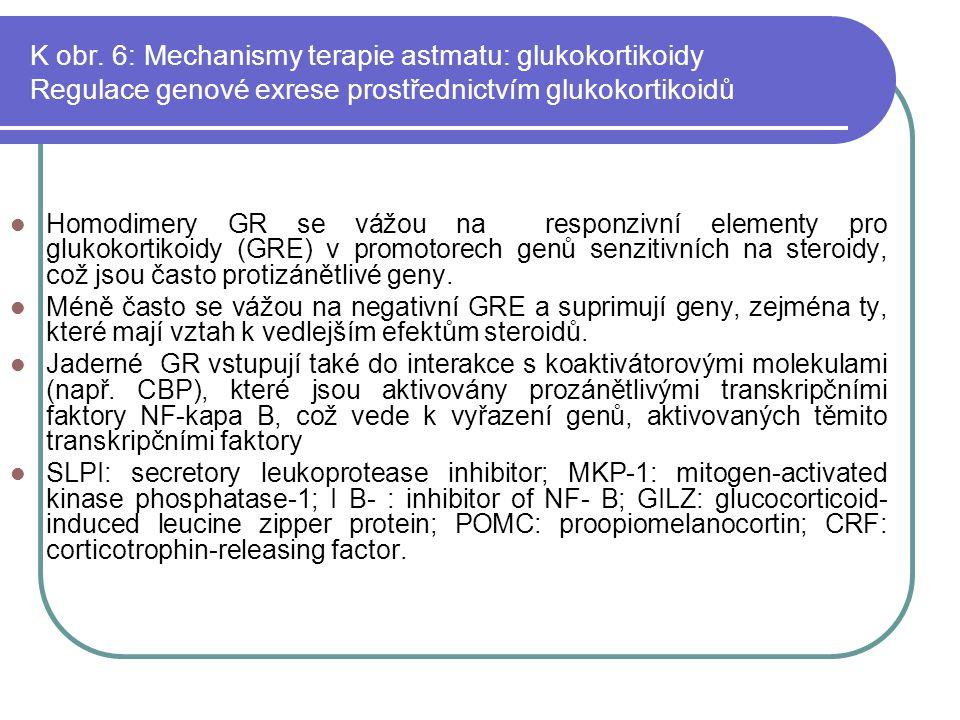 K obr. 6: Mechanismy terapie astmatu: glukokortikoidy Regulace genové exrese prostřednictvím glukokortikoidů