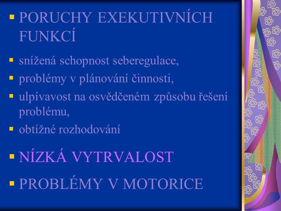 PORUCHY EXEKUTIVNÍCH FUNKCÍ
