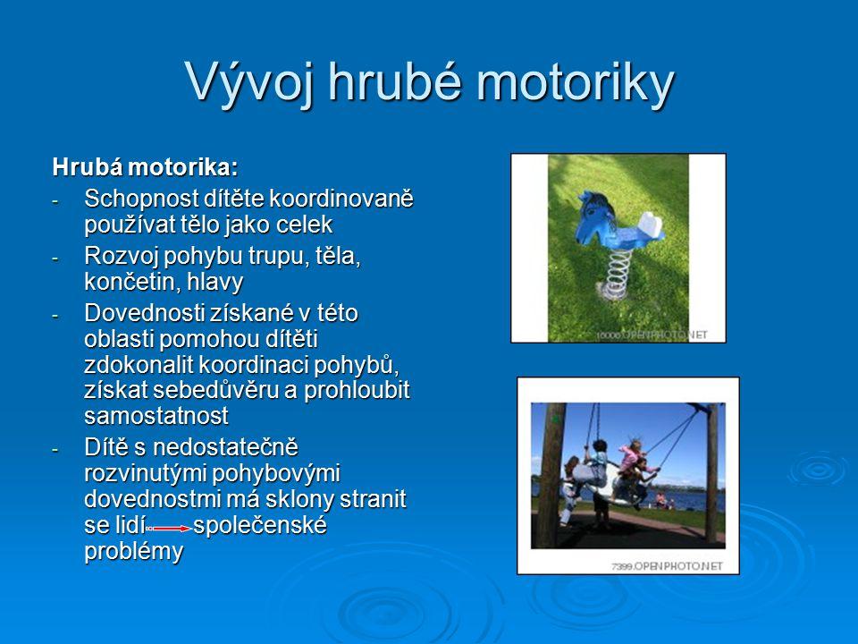 Vývoj hrubé motoriky Hrubá motorika: