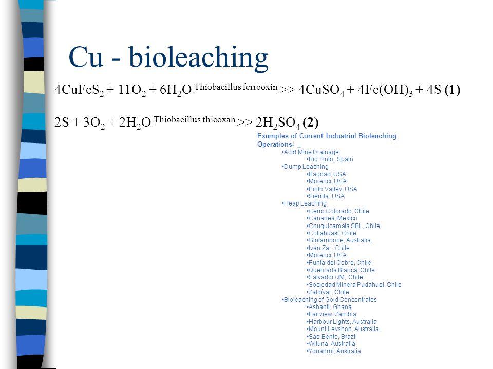 Cu - bioleaching 4CuFeS2 + 11O2 + 6H2O Thiobacillus ferrooxin >> 4CuSO4 + 4Fe(OH)3 + 4S (1) 2S + 3O2 + 2H2O Thiobacillus thiooxan >> 2H2SO4 (2)