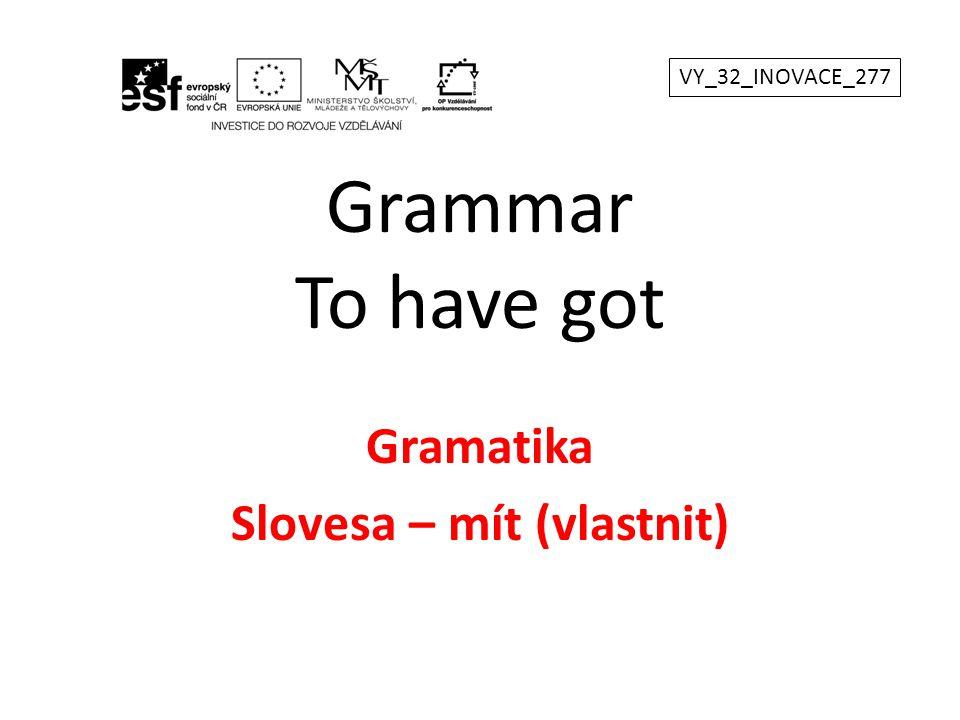 Gramatika Slovesa – mít (vlastnit)