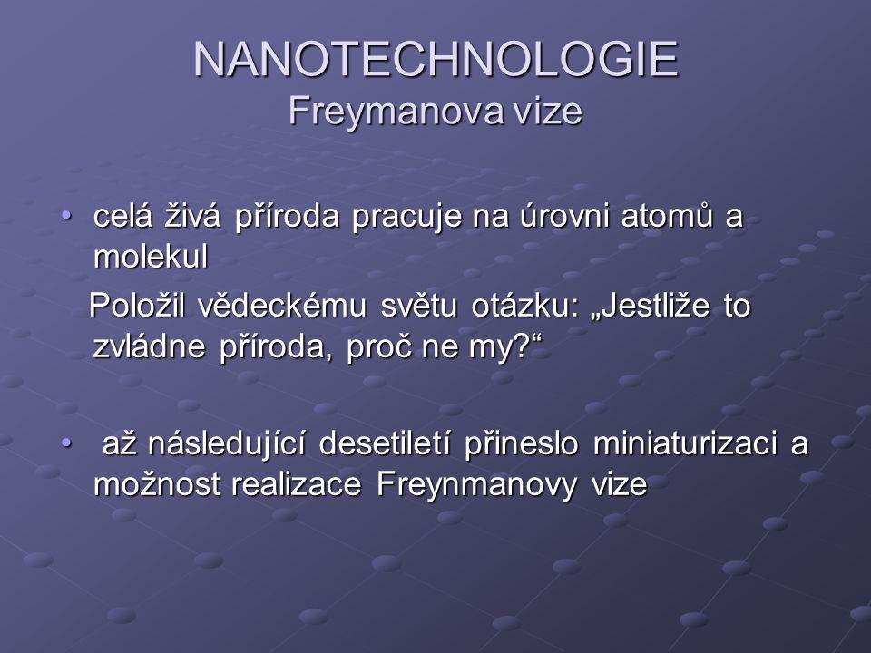 NANOTECHNOLOGIE Freymanova vize
